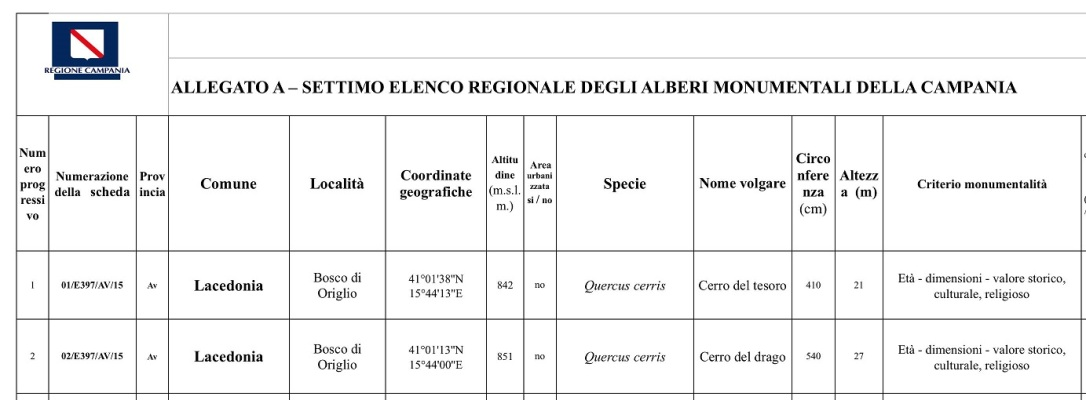 DECRETO COMUNE DI LACEDONIA..jpg10